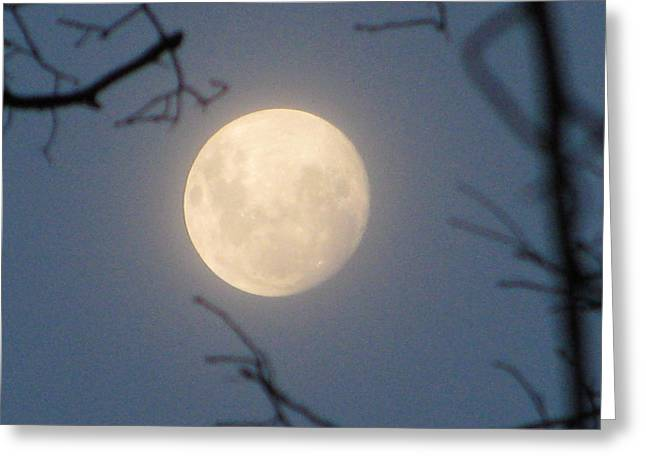 Luna Greeting Cards - January Blue Moon Greeting Card by Lindie Racz