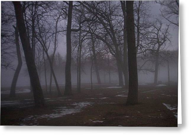 January Photographs Greeting Cards - January fog 2 Greeting Card by Anita Burgermeister