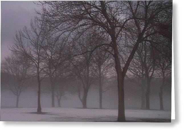 January Photographs Greeting Cards - January fog 4 Greeting Card by Anita Burgermeister
