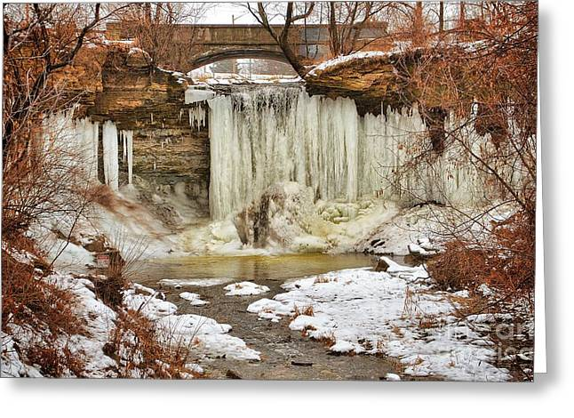 Escarpment Greeting Cards - January Melt at Wequiock Falls  Greeting Card by Shutter Happens Photography