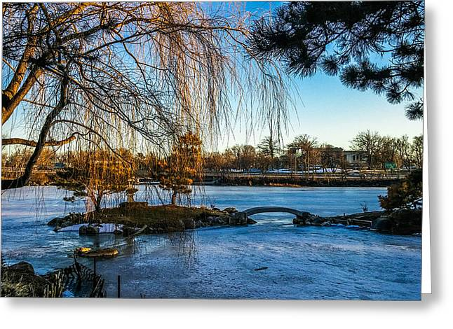 Kitchen Photos Paintings Greeting Cards - Japanese Garden On Ice Greeting Card by Carlos Ruiz