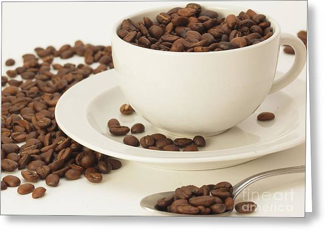 Valerie Morrison Greeting Cards - Java Beans Greeting Card by Valerie Morrison