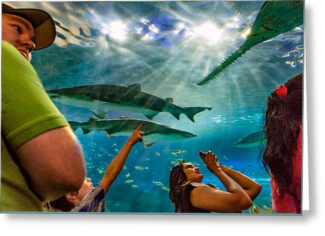Aquatic Greeting Cards - Jaw Dropping 2 Greeting Card by Steve Harrington