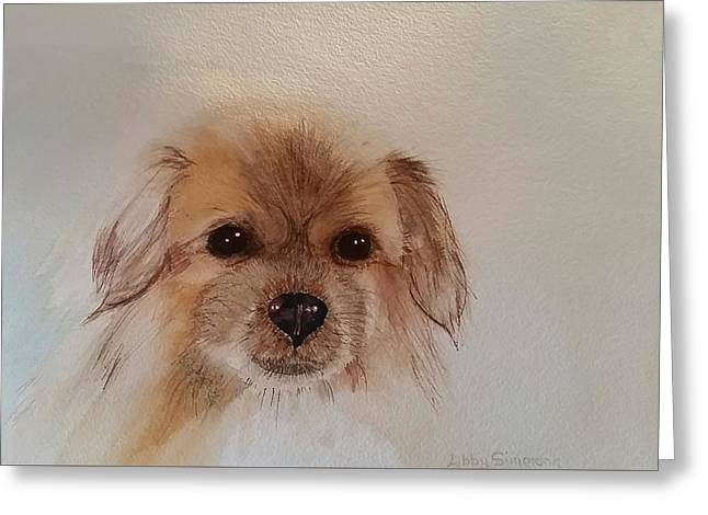 Spaniel Greeting Cards - Jazz the Tibetan Spaniel Greeting Card by Libby Simmons