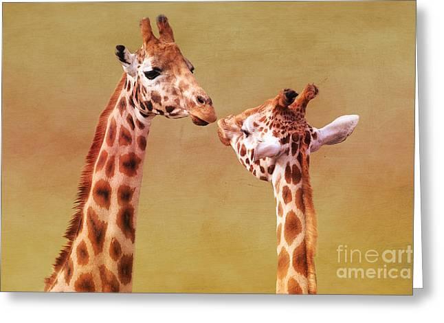 Eyelash Greeting Cards - Je taime Giraffes Greeting Card by Terri  Waters