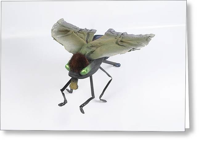 Insect Sculptures Greeting Cards - Jeanetic Green-Eyed Fly Greeting Card by Michael Jude Russo