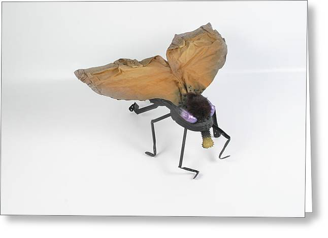 Insect Sculptures Greeting Cards - Jeanetic Violet-Eyed Fly Greeting Card by Michael Jude Russo