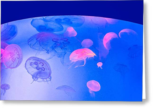 Illuminate Greeting Cards - Jellyfish Planet Greeting Card by Steve Harrington