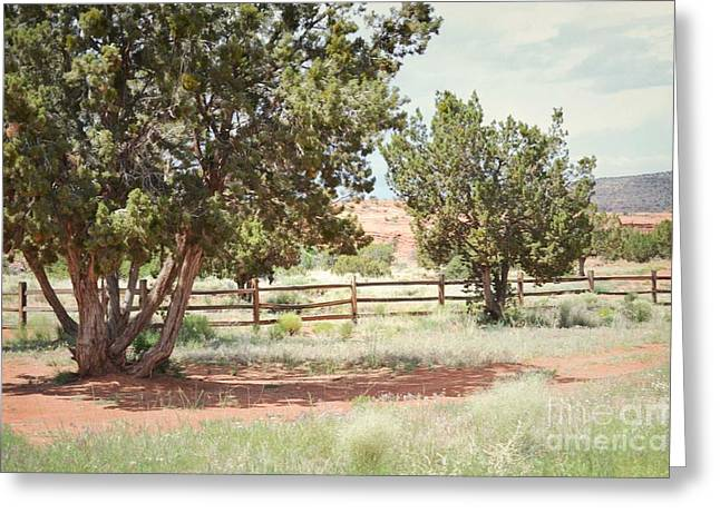 Jemez Mountains Greeting Cards - Jemez Valley Countryside Field Greeting Card by Andrea Hazel Ihlefeld