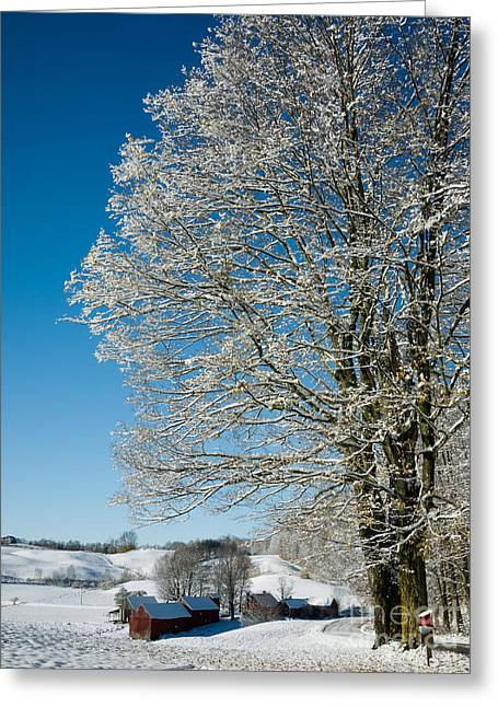 Winter Storm Greeting Cards - Jenne Farm Winter in Vermont Greeting Card by Edward Fielding