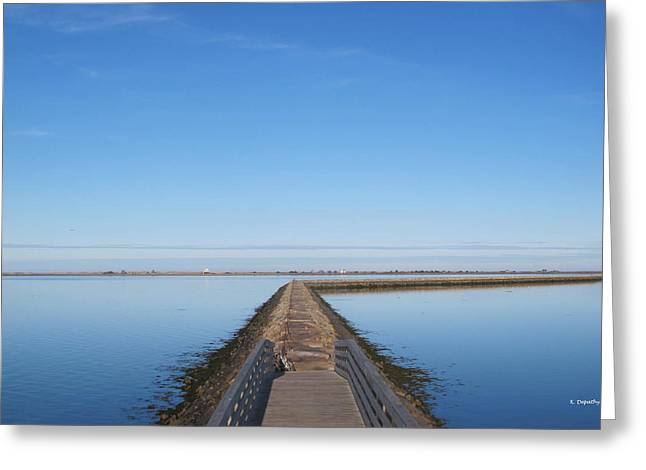 Plymouth Harbor Greeting Cards - Jetty  Greeting Card by Kevin Depathy