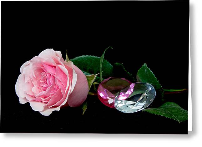 Nature Study Greeting Cards - Jewels Greeting Card by Valerie Cozart
