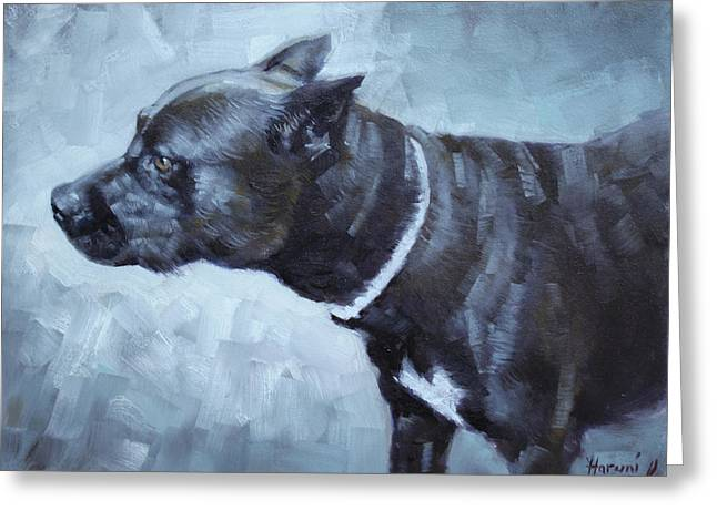 Bulldog Paintings Greeting Cards - Jiaculy Greeting Card by Ylli Haruni