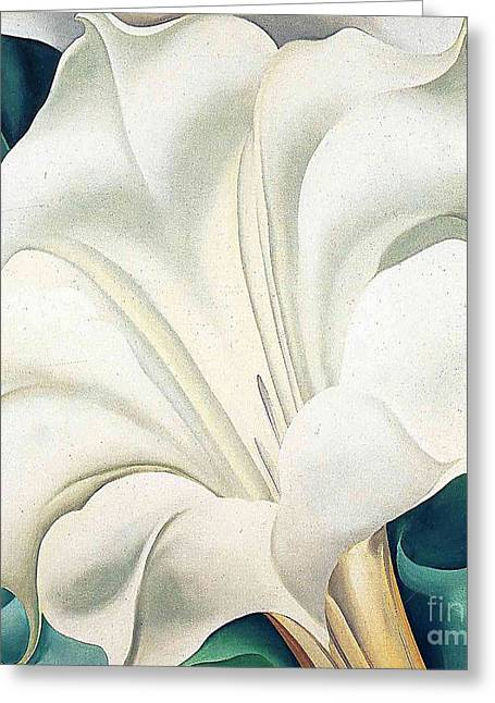 Jimson Weed By Georgia O'keeffe Greeting Card by Spencer McKain