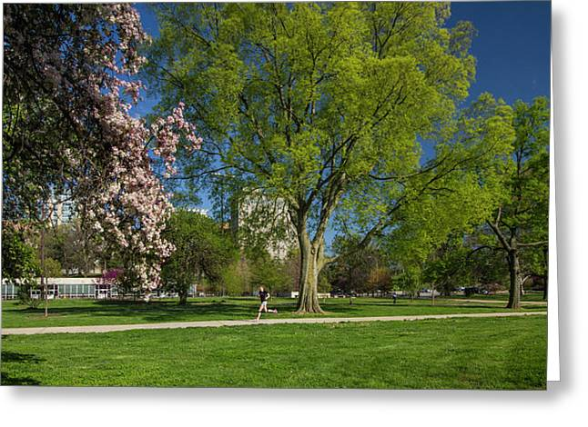 Jogging In Forest Park Greeting Card by Garry McMichael