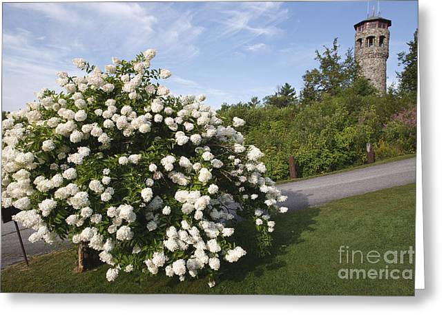 Prospect Place Greeting Cards - John Wingate Weeks Estate - Lancaster New Hampshire Greeting Card by Erin Paul Donovan