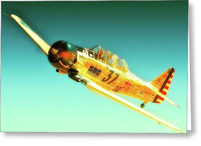 Reno Air Races Greeting Cards - John Zayac and T-6 Race 37 McDonald Racer Greeting Card by Gus McCrea