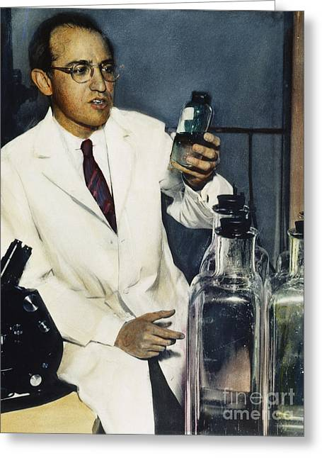 1950s Portraits Photographs Greeting Cards - Jonas Salk (1914-1995) Greeting Card by Granger
