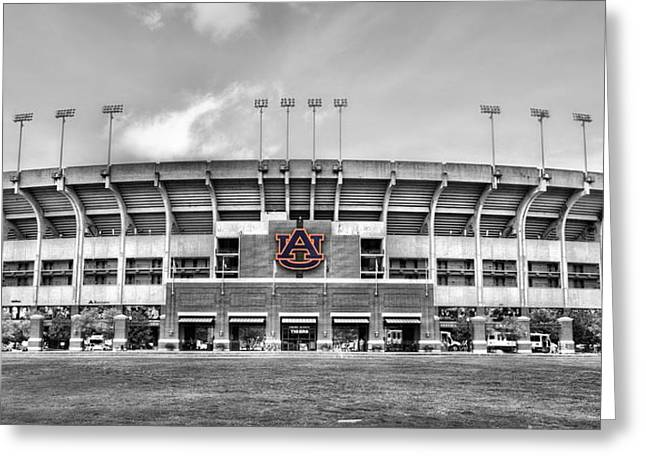 Sec Greeting Cards - Jordan Hare in Black and White Greeting Card by JC Findley