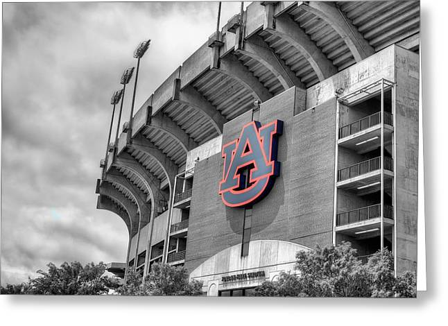 Recently Sold -  - Jordan Greeting Cards - Jordan Hare Greeting Card by JC Findley