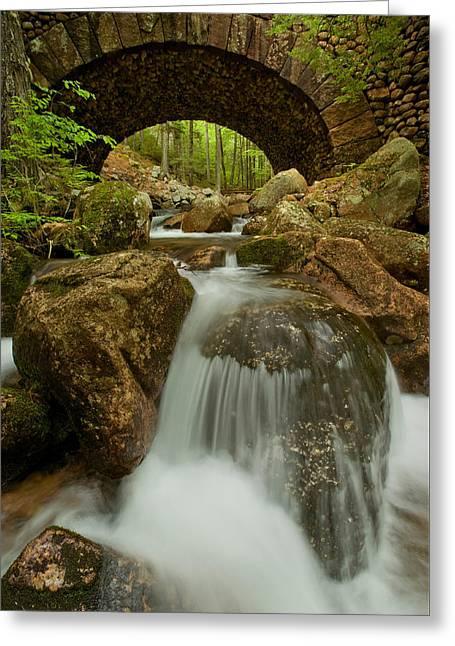 Jordan Pond Stream Carriage Bridge Greeting Card by Ed Lowe