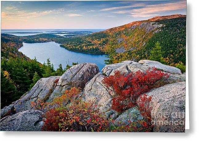 Foliage Greeting Cards - Jordan Pond Sunrise  Greeting Card by Susan Cole Kelly