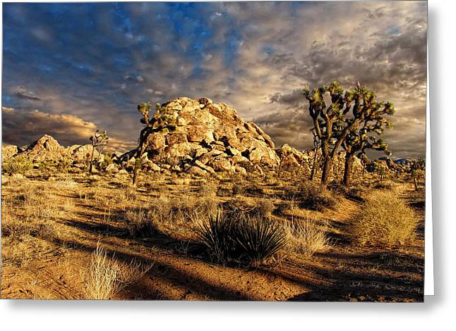 Glenn Mccarthy Greeting Cards - Joshua Tree National Park 2 Greeting Card by Glenn McCarthy Art and Photography