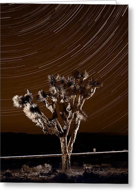 Star Valley Greeting Cards - Joshua Tree Night Lights Death Valley BW Greeting Card by Steve Gadomski