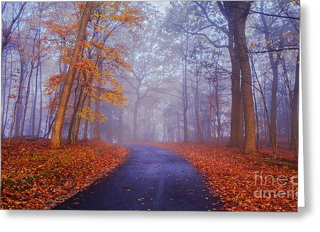 Fall Colors Greeting Cards - Journey continues Greeting Card by Rima Biswas