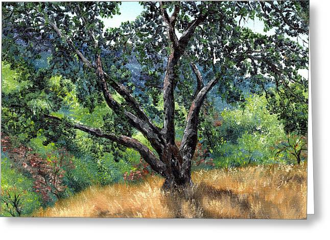 Oak Tree Paintings Greeting Cards - Juan Bautista de Anza Trail Oak Greeting Card by Laura Iverson