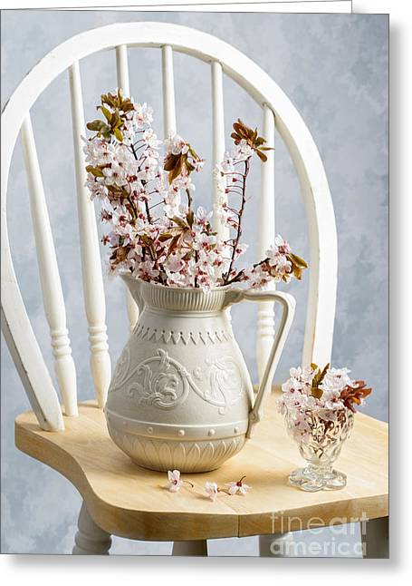 Interior Still Life Photographs Greeting Cards - Jug Of Spring Blossom Greeting Card by Amanda And Christopher Elwell