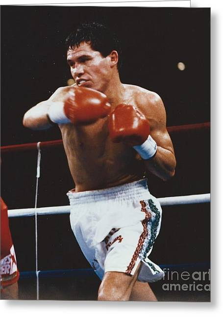 Cesar Chavez Greeting Cards - Julio Cesar Chavez Greeting Card by Dennis ONeil