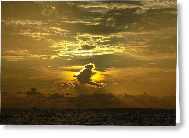 Beach Photography Greeting Cards - July 4th Sunrise Greeting Card by William Tasker