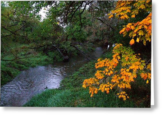 Indiana Landscapes Greeting Cards - July Fall Greeting Card by Michael L Kimble