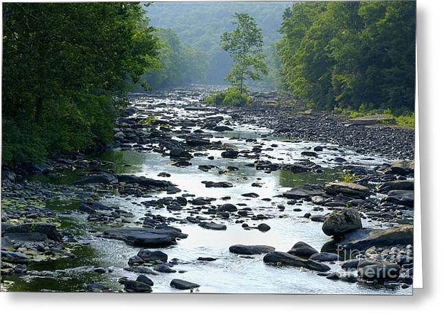 High Virginia Images Greeting Cards - July on the Tygart Greeting Card by Randy Bodkins