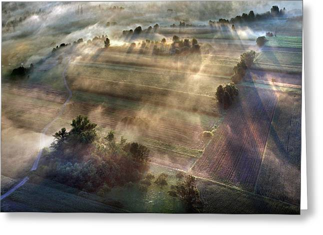 Fog Greeting Cards - June Greeting Card by Matjaz Cater