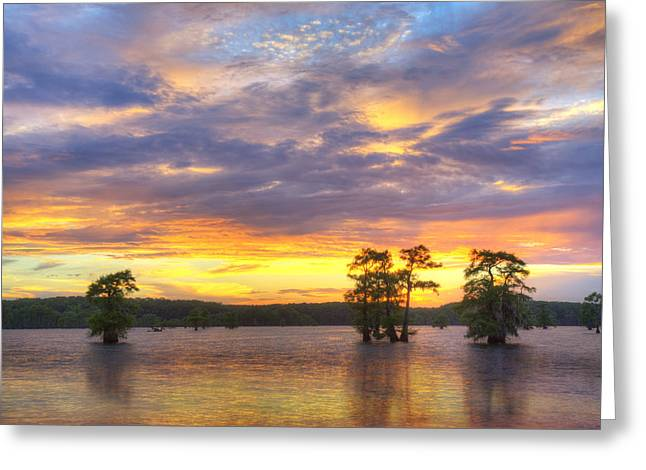 Caddo Lake Greeting Cards - June Sunset at Caddo Lake 3 Greeting Card by Rob Greebon