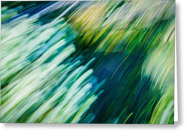 Paint Photograph Greeting Cards - Jungle Gust Greeting Card by Oliver Koch