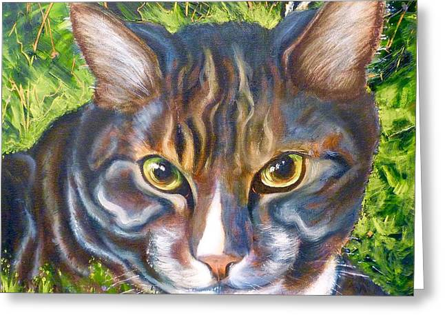 Cat Eyes Drawings Greeting Cards - Jungle Tabby Greeting Card by Susan A Becker