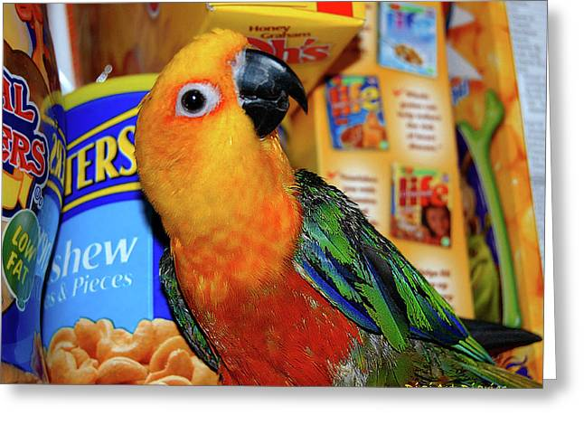 Cereal Digital Greeting Cards - Junk Food Junkie Caught Greeting Card by DigiArt Diaries by Vicky B Fuller