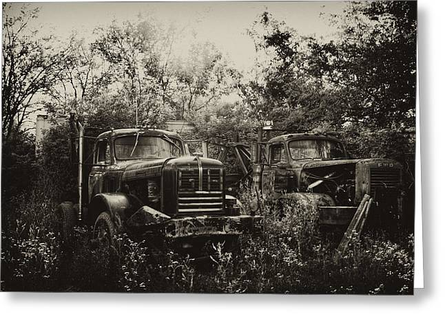 Junk Digital Greeting Cards - Junkyard Dogs III Greeting Card by Off The Beaten Path Photography - Andrew Alexander