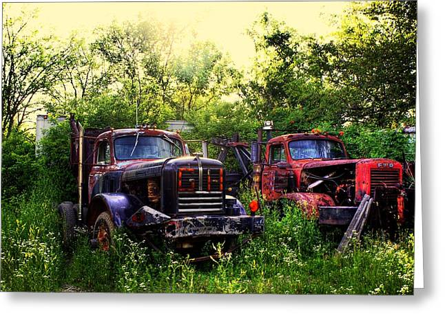 Junk Digital Greeting Cards - Junkyard Dogs Greeting Card by Off The Beaten Path Photography - Andrew Alexander