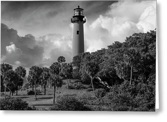 Jupiter Lighthouse Bw Sq Greeting Card by Laura Fasulo