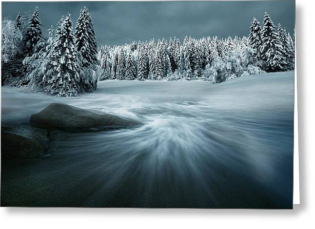 Fir Greeting Cards - Just A Dream Greeting Card by Arnaud Maupetit