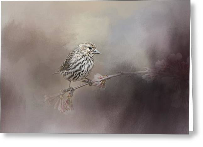 For The Garden Greeting Cards - Just A Whisper of Feathers Greeting Card by Jai Johnson