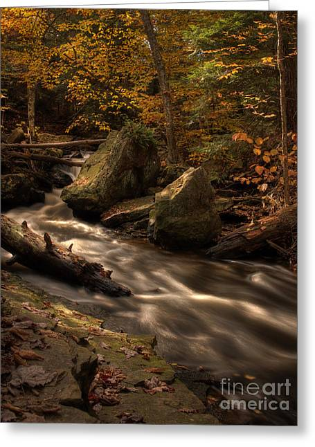 Tonemapping Greeting Cards - Just Above Mohawk Falls Greeting Card by Aaron Campbell
