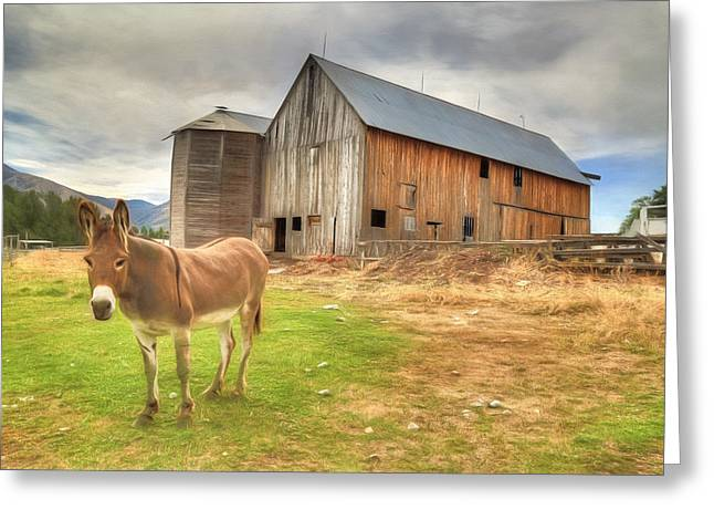 Donkey Greeting Cards - Just Another Day On the Farm Greeting Card by Donna Kennedy