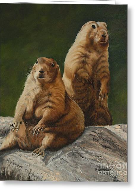 Danielle Smith Greeting Cards - Just Chillin - Prairie Dogs Greeting Card by Danielle Smith