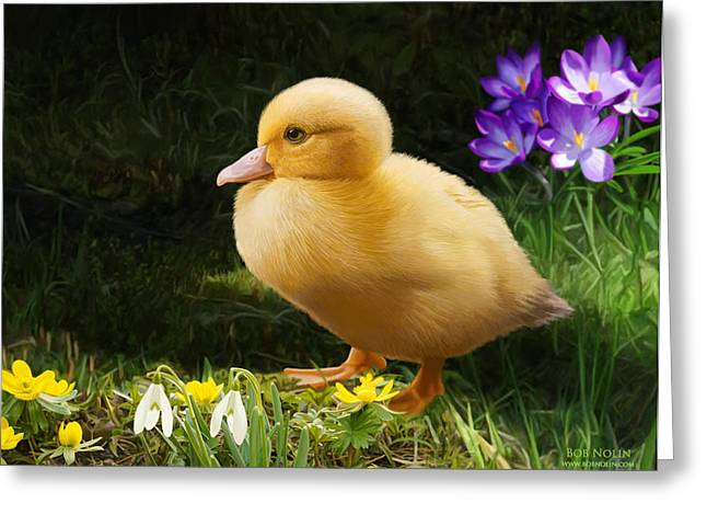 Ducklings Digital Greeting Cards - Just Ducky Greeting Card by Bob Nolin