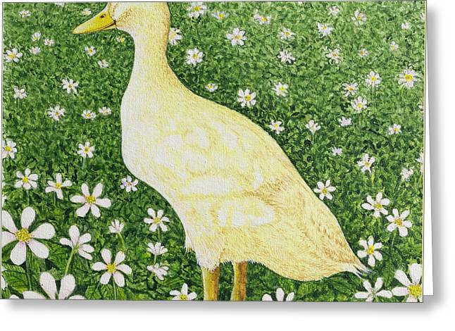 Just Looking Greeting Card by Pat Scott
